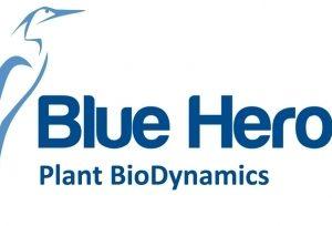 Blue_heron_logo